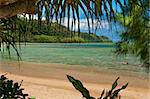 Tropical Beach Scape in Hawaii Stock Photo - Royalty-Free, Artist: GZSTUDIO                      , Code: 400-04705002