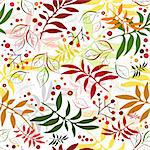 Seamless autumn floral white pattern with colorful leaves (vector) Stock Photo - Royalty-Free, Artist: OlgaDrozd                     , Code: 400-04715624