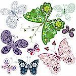 Set abstract butterflies for design on white (vector) Stock Photo - Royalty-Free, Artist: OlgaDrozd                     , Code: 400-04718311