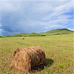 the scene of the meadow Inner Mongolia . Stock Photo - Royalty-Free, Artist: csguy                         , Code: 400-04764311