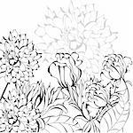Sketch with flowers Stock Photo - Royalty-Free, Artist: Ateli                         , Code: 400-04787330