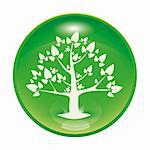 a green glossy icon with a tree