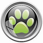 Illustration of animal print icon on the black button.