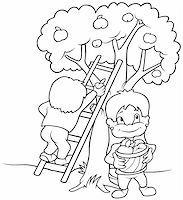 Children's Harvesting Fruits - Black and White Cartoon illustration, Vector Stock Photo - Royalty-Freenull, Code: 400-04804131