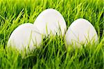 three white easter eggs in grass with soft focus Stock Photo - Royalty-Free, Artist: RobStark                      , Code: 400-04811559