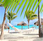 Caribbean beach hammock and palm trees in Mayan Riviera Mexico Stock Photo - Royalty-Free, Artist: lunamarina                    , Code: 400-04825422