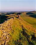 Hadrian's Wall, Northumberland - Housesteads - Roman Stock Photo - Premium Rights-Managed, Artist: Arcaid, Code: 845-04827107