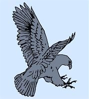 Vector illustration of eagle Stock Photo - Royalty-Freenull, Code: 400-04836735