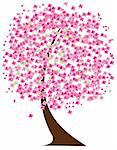 vector illustration of  cherry tree  in blossom in the wind