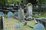 multiple rows of grave stones in a historic cemetery Stock Photo - Royalty-Free, Artist: Keith4brd                     , Code: 400-04849824