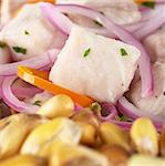 Peruvian-style ceviche made out of raw dogfish (Spanish: tollo), red onions and aji (Peruvian hot pepper) and served with roasted corn (cancha) (Selective Focus, Focus on the fish) Stock Photo - Royalty-Free, Artist: ildi                          , Code: 400-04852544
