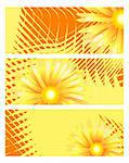 Collection of sunny banners with golden flowers