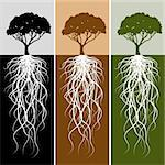 An image of a vertical tree root banner set. Stock Photo - Royalty-Free, Artist: cteconsulting                 , Code: 400-04873405