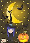 Vector illustration of witch and pumpkin on the background of moon with bats Stock Photo - Royalty-Free, Artist: pressmaster                   , Code: 400-04873906