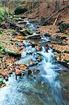 Rocky Stream, Running Through Autumn Mountain Forest Stock Photo - Royalty-Free, Artist: Yuriy                         , Code: 400-04892108