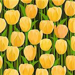 vector yellow tulip flowers field seamless background Stock Photo - Royalty-Free, Artist: 100ker                        , Code: 400-04900402