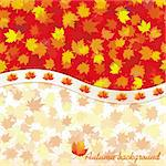 Autumn background with maple leaves, vector illustration Stock Photo - Royalty-Free, Artist: MarketOlya                    , Code: 400-04902439