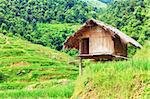 Landscape with a hut in the paddy rice terraces. Stock Photo - Royalty-Free, Artist: GoodOlga                      , Code: 400-04907288