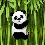 illustration, curious panda on stem of the bamboo