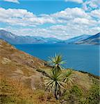 View of the water and surrounding mountains at Lake Hawea in New Zealand Stock Photo - Royalty-Free, Artist: alexeys                       , Code: 400-04917161