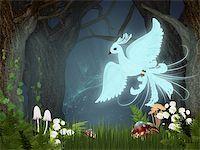 frbird - Illustration of fire-bird Stock Photo - Royalty-Freenull, Code: 400-04920271