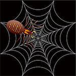 illustration of a spooky spider for halloween or as a background Stock Photo - Royalty-Free, Artist: Nicemonkey                    , Code: 400-04964242
