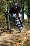 Downhill in forest Stock Photo - Royalty-Free, Artist: Petrichuk                     , Code: 400-04984334