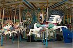 Carousel horse on merry go round
