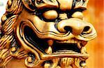 Chinese golden statue of an angry lion