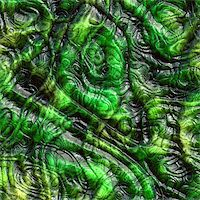 snake skin - Computer generated illustration of wrinkled green lizard skin Stock Photo - Royalty-Freenull, Code: 400-05043308