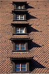 A german tiled roof with many windows Stock Photo - Royalty-Free, Artist: Nouk                          , Code: 400-05043530