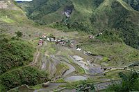 philippine terrace farming - rice terraces in northern luzon the philippines Stock Photo - Royalty-Freenull, Code: 400-05044040