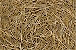 straw background Stock Photo - Royalty-Free, Artist: markabond                     , Code: 400-05063526