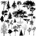 Detailed vectoral tree silhouettes. Stock Photo - Royalty-Free, Artist: pinare                        , Code: 400-05149937