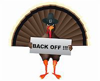 angry cartoon turkey with banner Stock Photo - Royalty-Freenull, Code: 400-05179147