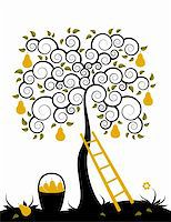 vector pear tree, ladder and basket of pears on white background, Adobe Illustrator 8 format Stock Photo - Royalty-Freenull, Code: 400-05195190