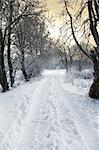 winter alley, setting sun in background Stock Photo - Royalty-Free, Artist: kmit                          , Code: 400-05196690