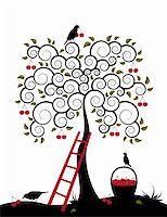 vector cherry tree, ladder, birds and basket of cherries on white background, Adobe Illustrator 8 format Stock Photo - Royalty-Freenull, Code: 400-05200231
