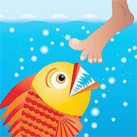 piranha fish - Cartoon piranha trying to bite the leg, vector illustration Stock Photo - Royalty-Freenull, Code: 400-05208773