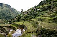 philippine terrace farming - the world heritage ifugao rice terraces on the steep mountain slopes of batad in northern luzon in the philippines Stock Photo - Royalty-Freenull, Code: 400-05220687