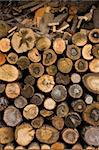 Closeup Of Some Piled Old Wood Stumps Background Stock Photo - Royalty-Free, Artist: ninette_luz                   , Code: 400-05223108