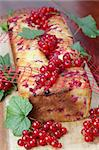 Homemade sponge cake with fresh organic red currants Stock Photo - Royalty-Free, Artist: ingridhs                      , Code: 400-05234002