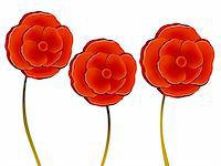 stamen - illustration drawing of three beautiful red flowers Stock Photo - Royalty-Freenull, Code: 400-05234785