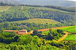 Hills Of Toscana With Vineyard In The Chianti Region Stock Photo - Royalty-Free, Artist: gkuna                         , Code: 400-05245790