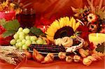 Still life and harvest or table decoration for Thanksgiving Stock Photo - Royalty-Free, Artist: Brebca                        , Code: 400-05258348