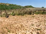 drought land in the fields of catalonia Stock Photo - Royalty-Free, Artist: csp                           , Code: 400-05261177