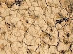 drought land in the fields of catalonia Stock Photo - Royalty-Free, Artist: csp                           , Code: 400-05261179