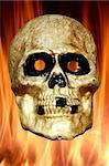 A Scary skull with fire background Stock Photo - Royalty-Free, Artist: njnightsky                    , Code: 400-05266778