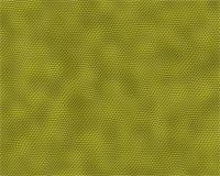 snake skin - lizard skin texture Stock Photo - Royalty-Freenull, Code: 400-05268030