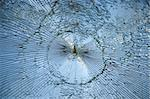 Shattered glass on a window Stock Photo - Royalty-Free, Artist: PinkBadger                    , Code: 400-05270121